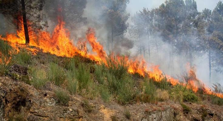 Incendios_2019.03.27